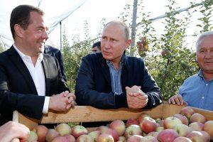 Alternativna tržišta za srpske jabuke