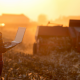 Milenijalci – nova radna snaga u poljoprivredi