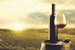 Nova EU regulativa olakšava geografsku zaštitu porekla vina