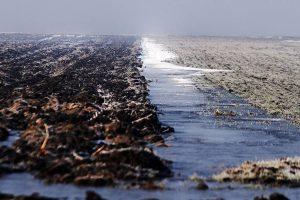 Nestajanje podzemnih voda kao tempirana bomba