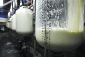 Strano mleko obara cenu domaćeg
