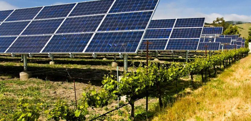 UGT planira solarne panele na 2.000 hektara u Srbiji