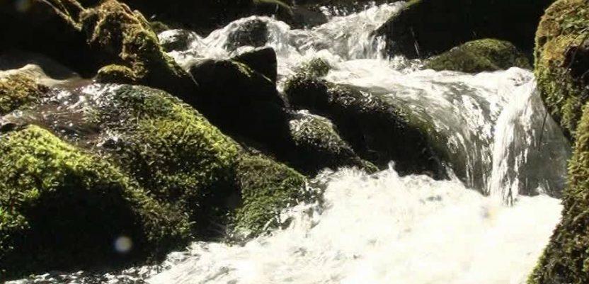 Crna Gora: Šest reka slobodnog toka sigurno od uništenja