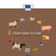 """EU: Pet ključnih ciljeva strategije """"Od farme do viljuške"""""""
