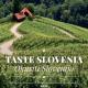 Slovenija i Portugalija – Evropski regioni gastronomije za 2021.