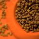 Izvoz hrane za pse i mačke iz Srbije u 35 zemalja