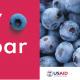 Prvi internacionalni skup uzgajivača bobičastog voća u Srbiji