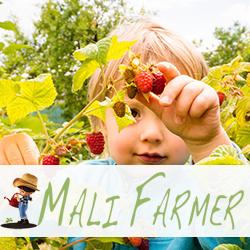 Mali Farmer